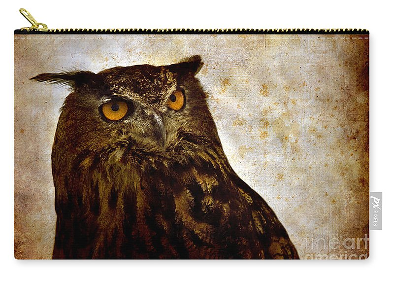 Great Owl Carry-all Pouch featuring the photograph The Great Owl by Angel Ciesniarska
