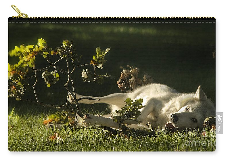 Wolf Carry-all Pouch featuring the photograph The Happy Wolf by Angel Ciesniarska
