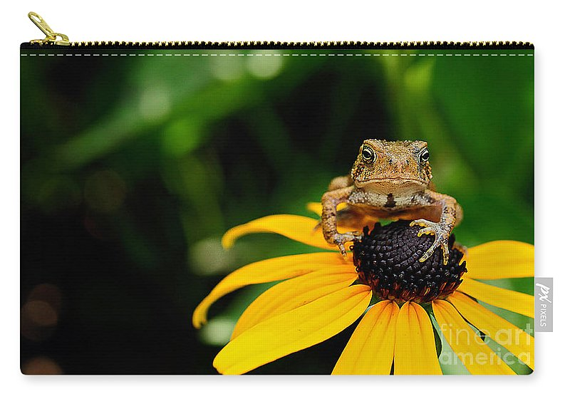 Toad Carry-all Pouch featuring the photograph The Harbinger by Lois Bryan