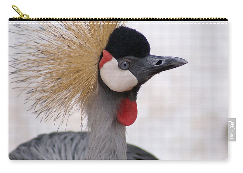 Crane Carry-all Pouch featuring the photograph The Headress Crowned Crane by Heather Coen