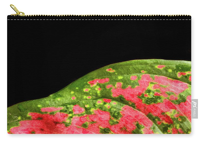 Red And Green Leaf On A Black Background Carry-all Pouch featuring the photograph The Hills Of Mars by Jipsi Immanuelle