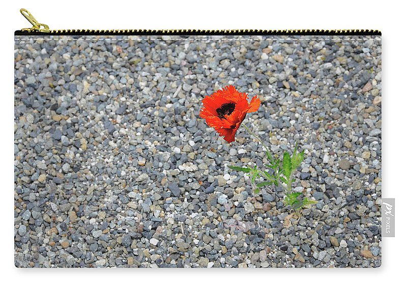 Poppy Carry-all Pouch featuring the photograph The Hopeful Poppy by Michael Bessler