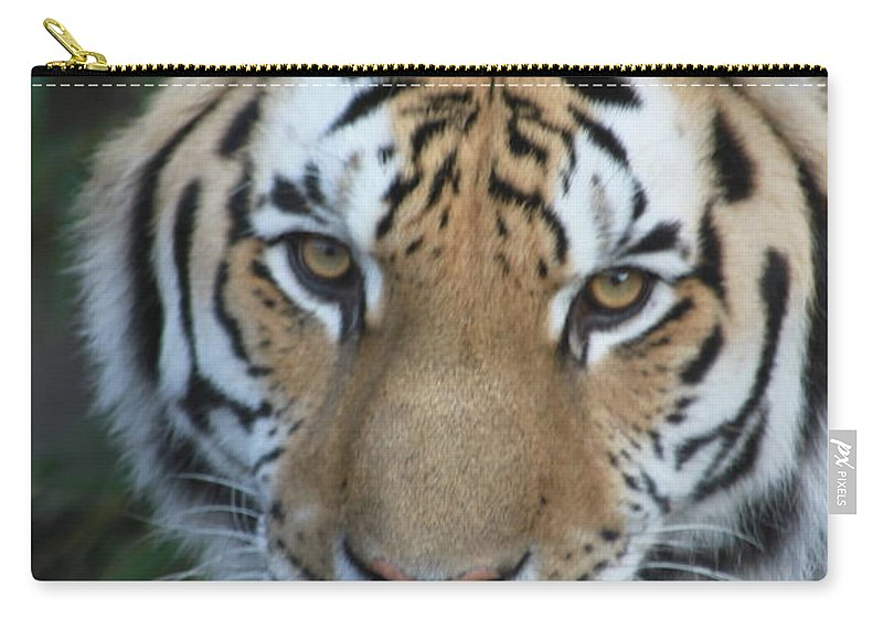Tiger Carry-all Pouch featuring the photograph The Hunter by Laddie Halupa