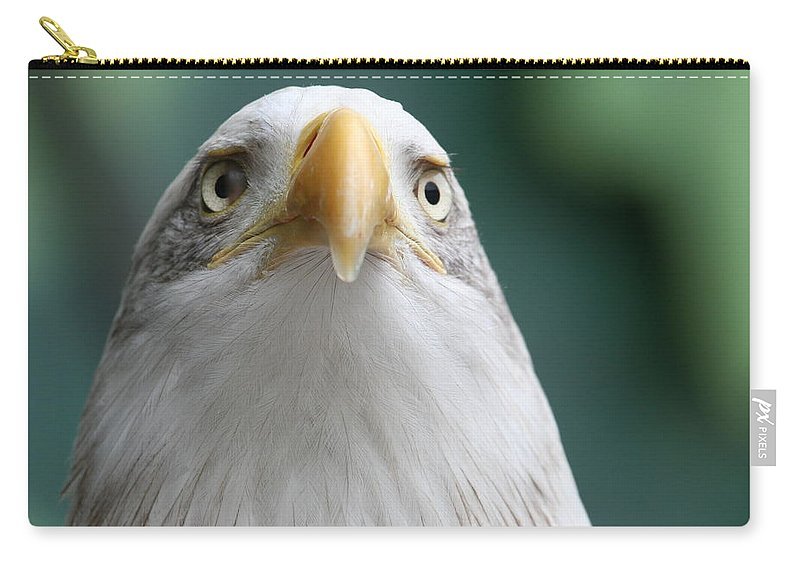 Eagle Carry-all Pouch featuring the photograph The Hunters Stare by Laddie Halupa