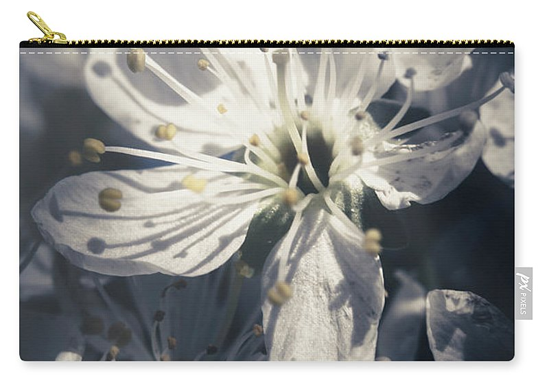 Blue Carry-all Pouch featuring the photograph The Light Of Spring Petals by Jorgo Photography - Wall Art Gallery