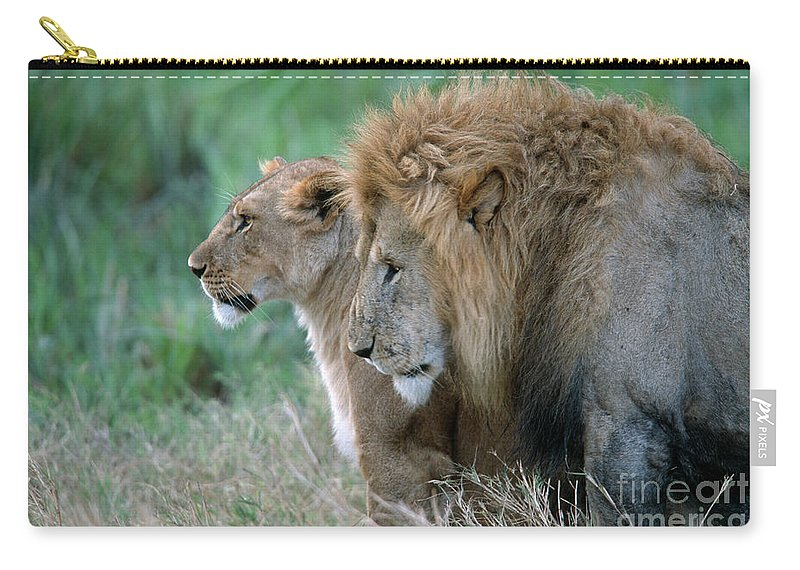 Lions Carry-all Pouch featuring the photograph The Lion And His Lioness by Sandra Bronstein