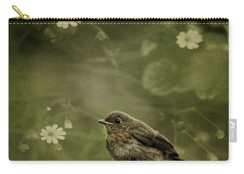 Robin Carry-all Pouch featuring the photograph The Little Robin by Angel Ciesniarska