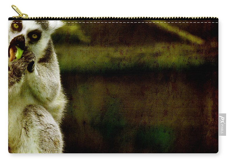 Lori Carry-all Pouch featuring the photograph The Lori by Angel Ciesniarska