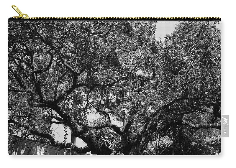 Black And White Carry-all Pouch featuring the photograph The Monastery Tree by Rob Hans