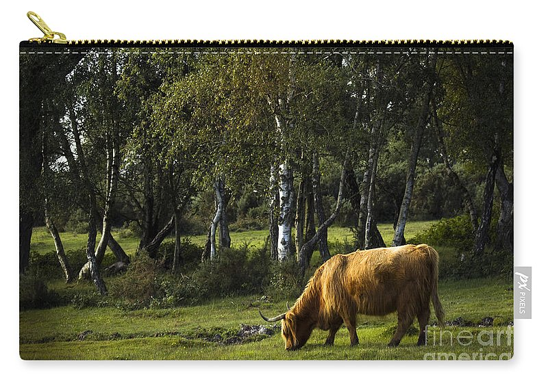 Heilan Coo Carry-all Pouch featuring the photograph the New forest creatures by Angel Tarantella