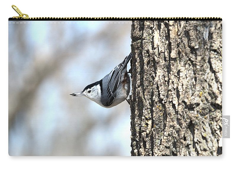Animal Carry-all Pouch featuring the photograph The Nuthatch by Bonfire Photography