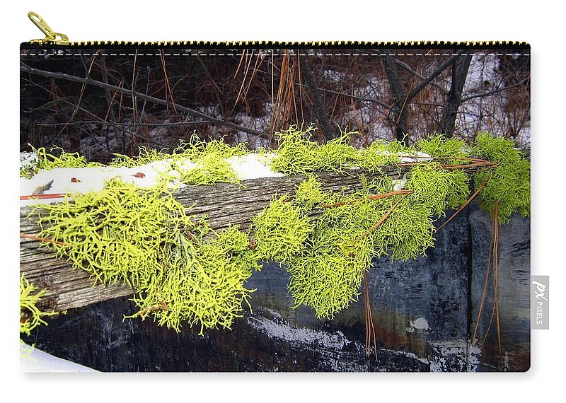 Moss Carry-all Pouch featuring the photograph The Old Mossy Flume by Will Borden