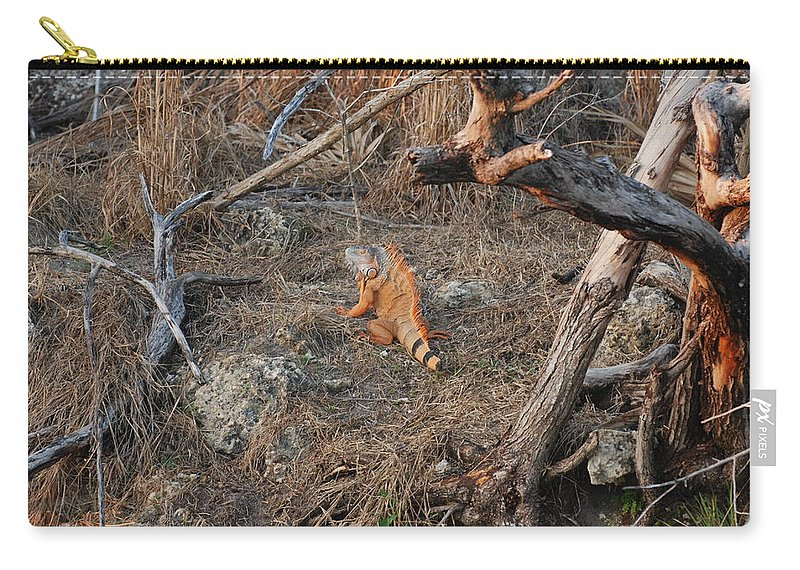 Branches Carry-all Pouch featuring the photograph The Orange Iguana by Rob Hans