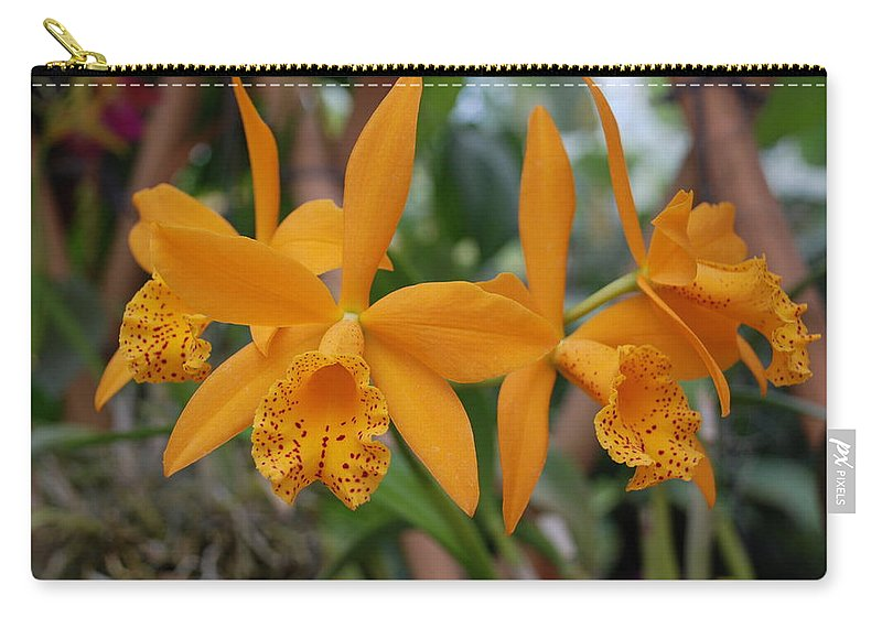 Macro Carry-all Pouch featuring the photograph The Orange Orchids by Rob Hans