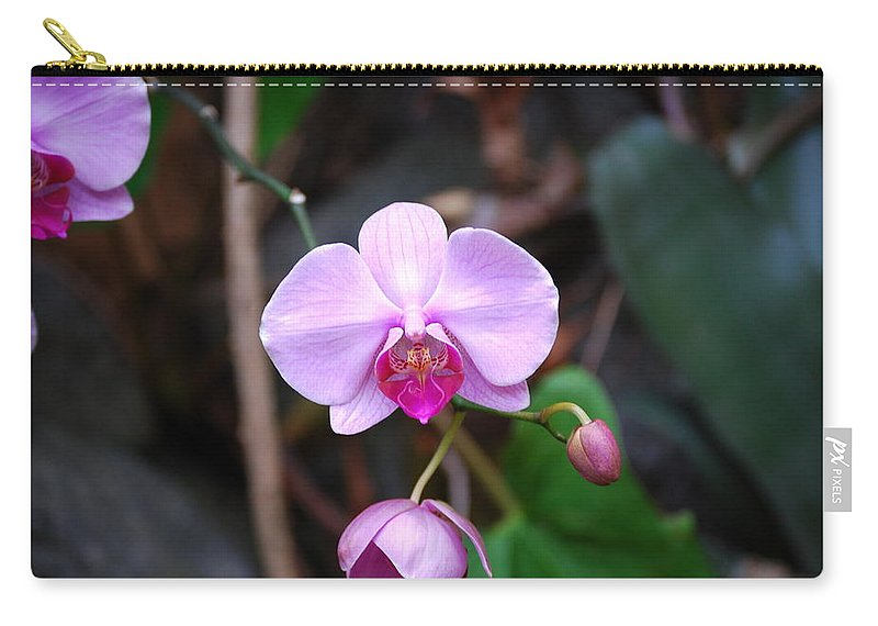 Orchid Carry-all Pouch featuring the photograph The Orchid by Eric Liller