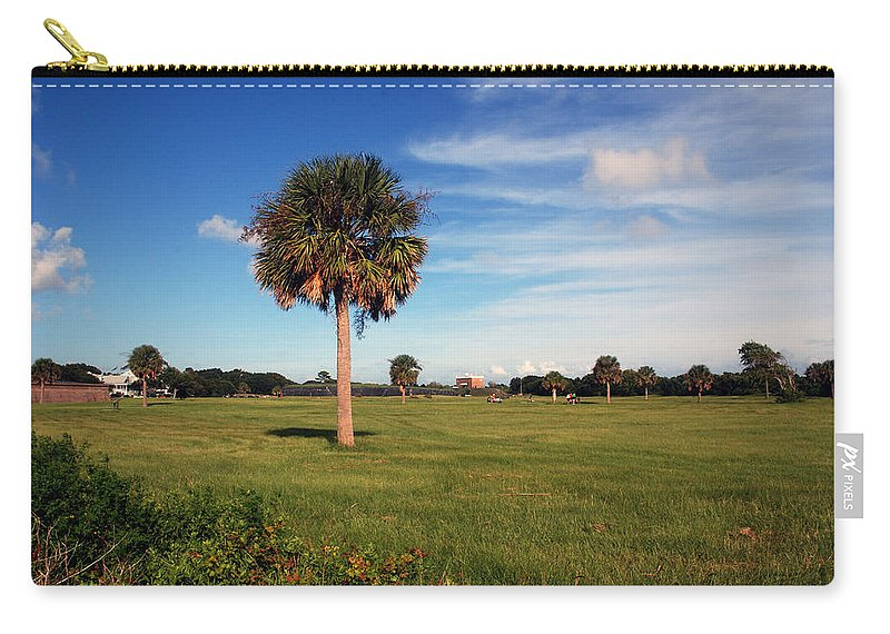 Photography Carry-all Pouch featuring the photograph The Palmetto Tree by Susanne Van Hulst