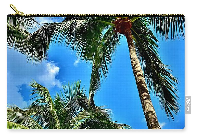 Palms Carry-all Pouch featuring the photograph The Palms by Lisa Renee Ludlum