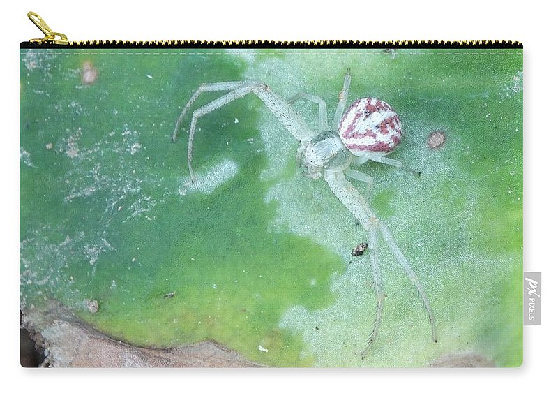 Flower Crab Spider Carry-all Pouch featuring the photograph The Patient Ambush Hunter by Rhiannon Amaya