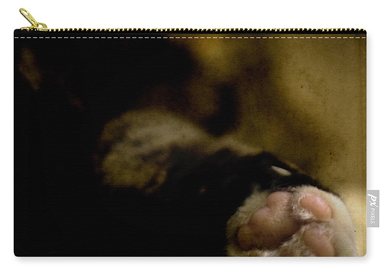 Cat Carry-all Pouch featuring the photograph The Paw by Angel Ciesniarska