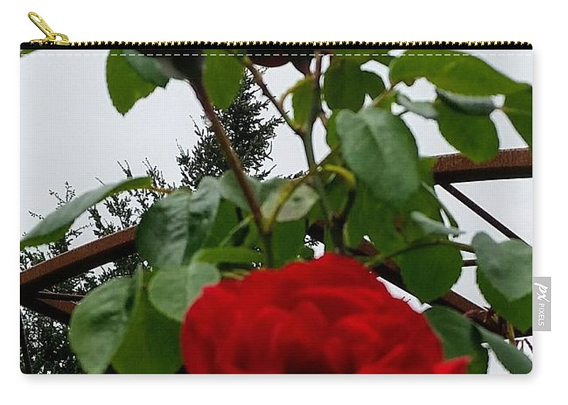 Botanical Flower's Nature Carry-all Pouch featuring the photograph The peaceful place 7 by Valerie Josi