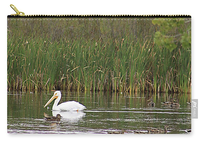 Pelican Carry-all Pouch featuring the photograph The Pelican And The Ducklings by Alyce Taylor