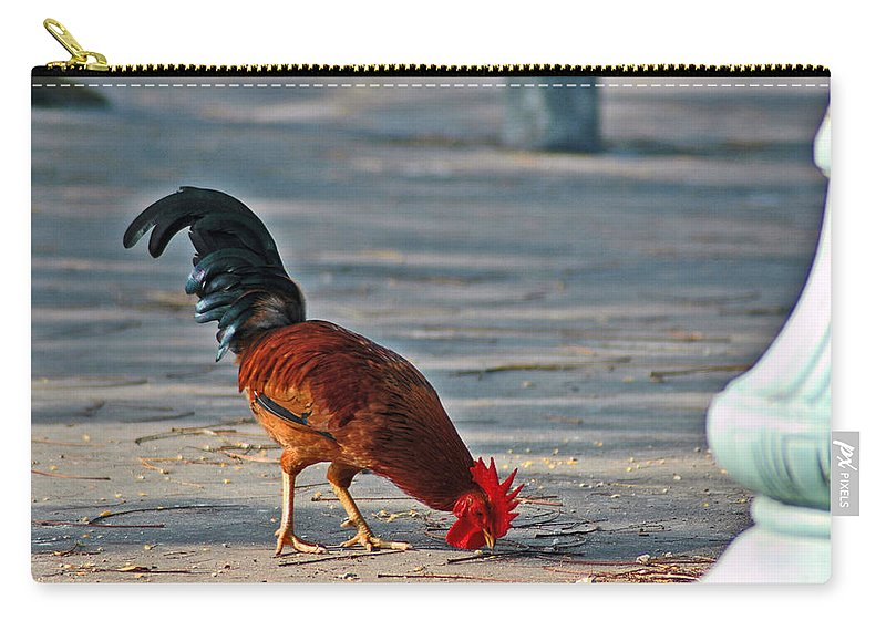 Rooster Carry-all Pouch featuring the photograph The Picking Rooster by Susanne Van Hulst