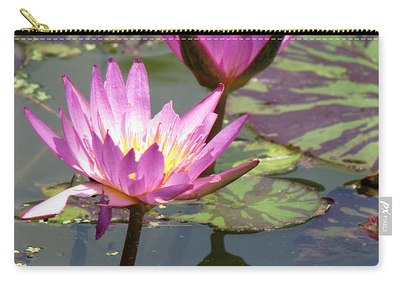 Lillypad Carry-all Pouch featuring the photograph The pond by Amanda Barcon