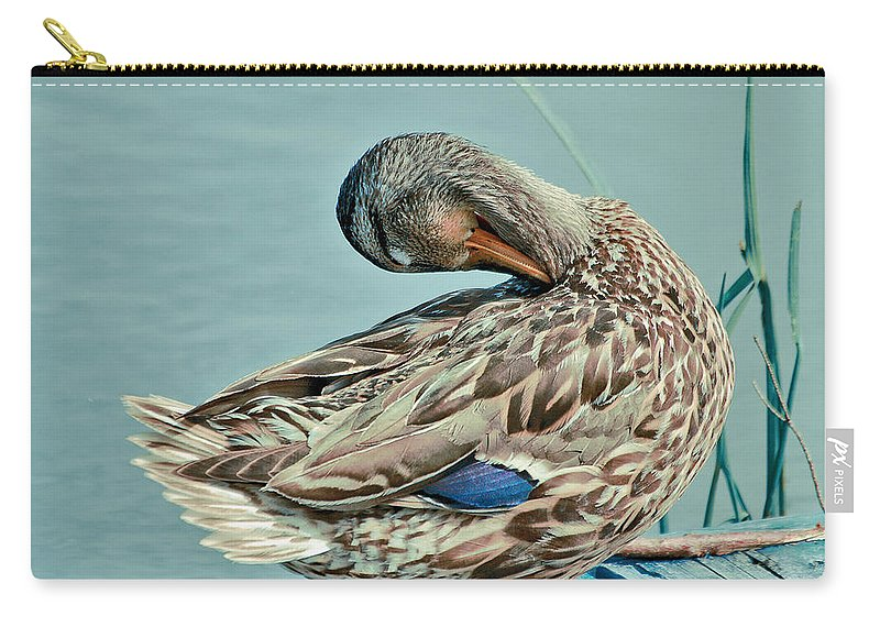 Duck Carry-all Pouch featuring the photograph The Pose by Aimelle