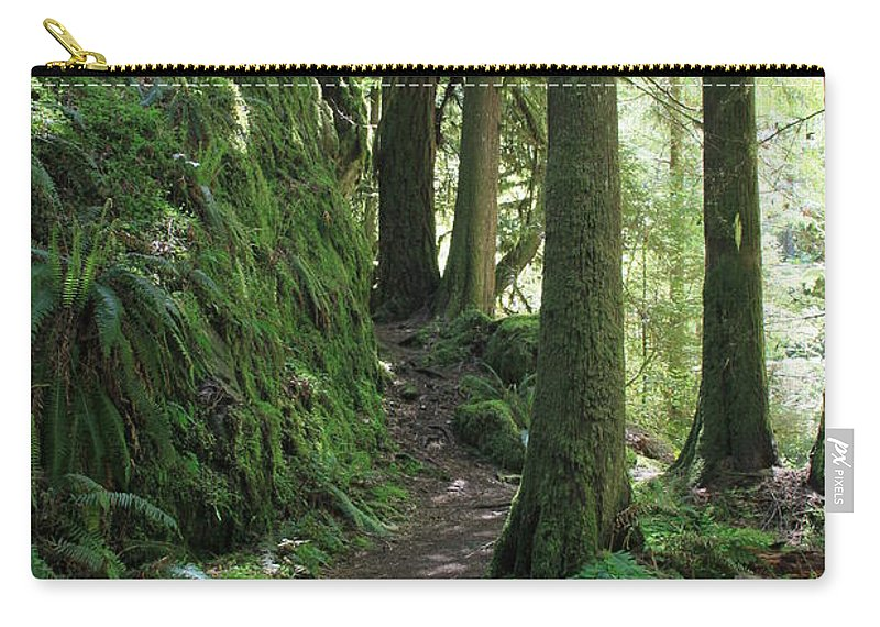 Vertical Carry-all Pouch featuring the photograph The Quiet Forest by Karen Hussey
