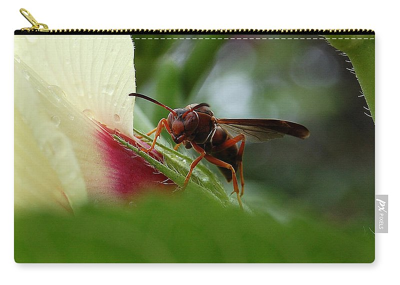 Wasp Carry-all Pouch featuring the photograph The Real Gardener by Robert Meanor