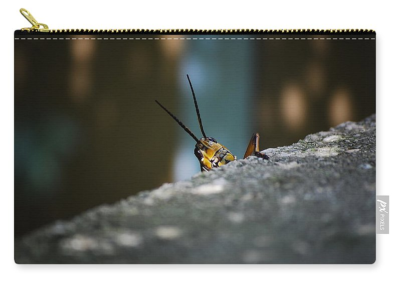 Bugs Carry-all Pouch featuring the photograph The Real Hopper by Robert Meanor