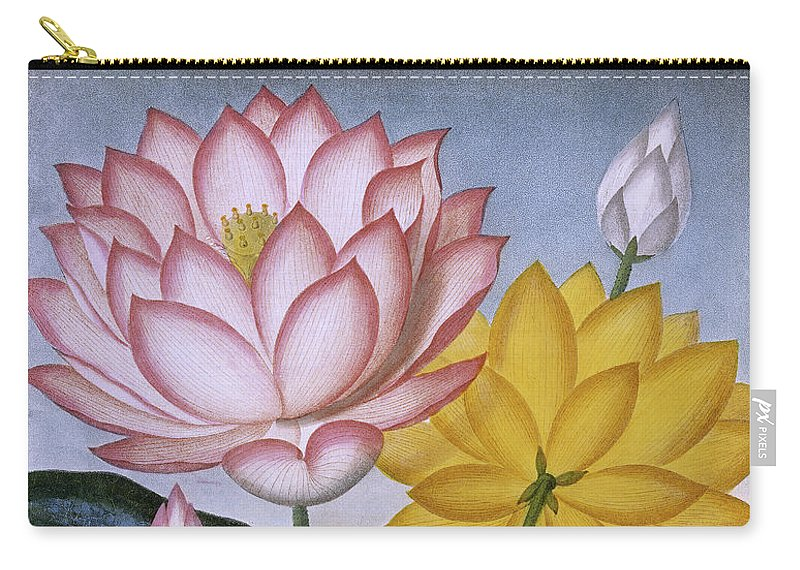 The Sacred Egyptian Bean Lotus Or Nelumbo Nucifera Carry All Pouch