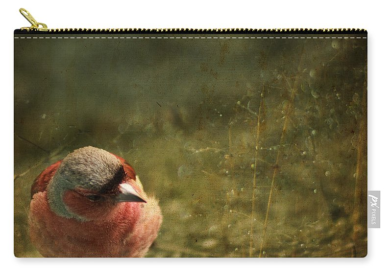 Chaffinch Carry-all Pouch featuring the photograph The Sad Chaffinch by Angel Ciesniarska