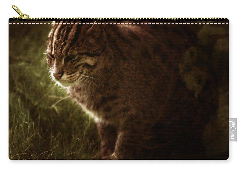 Sleepy Carry-all Pouch featuring the photograph The Sleepy Wild Cat by Angel Tarantella