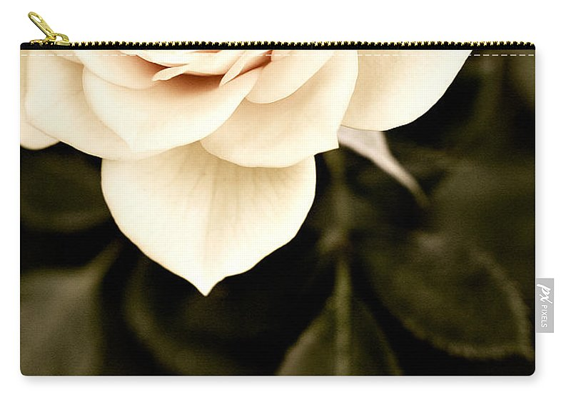 Rose Carry-all Pouch featuring the photograph The Softest Rose by Marilyn Hunt