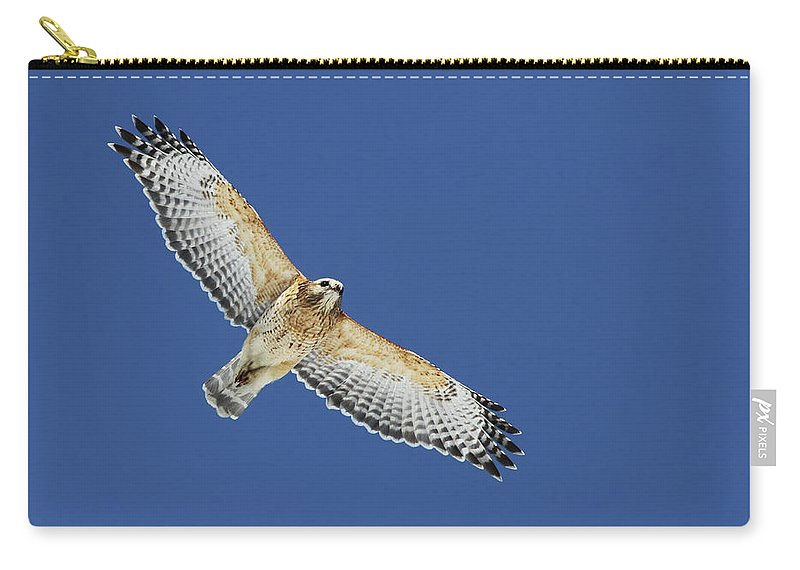 Animal Carry-all Pouch featuring the photograph The Spirit Of The Hawk by Mircea Costina Photography
