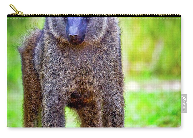 Africa Carry-all Pouch featuring the photograph The Stare by Rick Furmanek