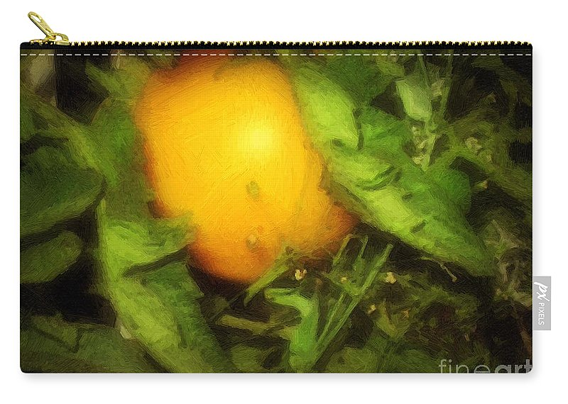 Garden Carry-all Pouch featuring the painting The Sun Is Sleeping In The Garden by RC DeWinter