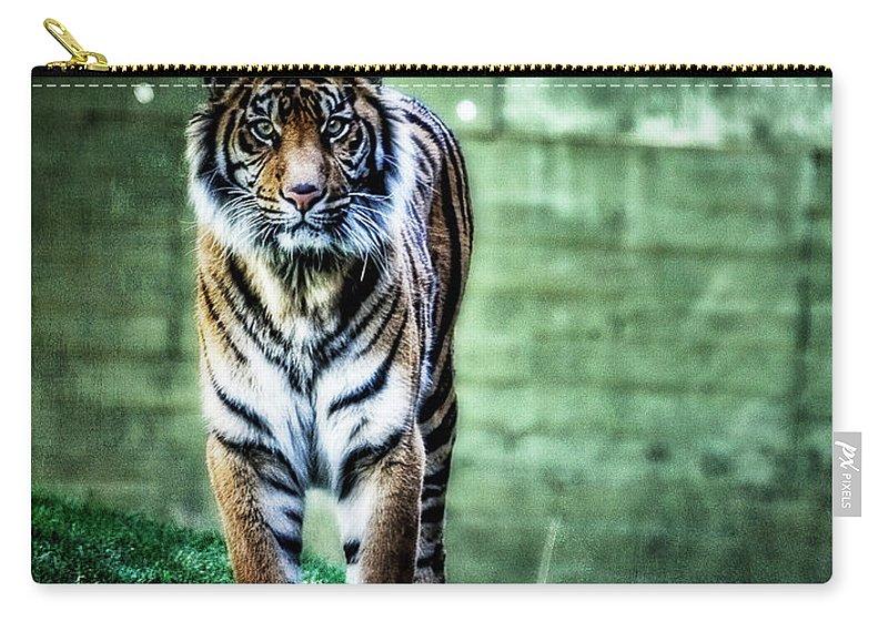 Sumatran Tiger Carry-all Pouch featuring the photograph The Tigress by Saija Lehtonen