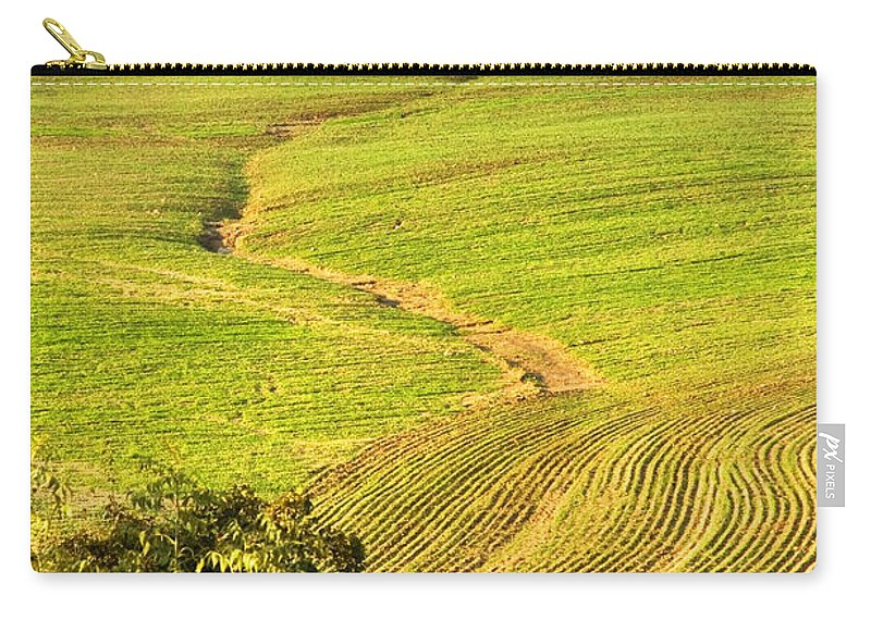 Tree Carry-all Pouch featuring the photograph The Tree And The Furrows by Silvia Ganora