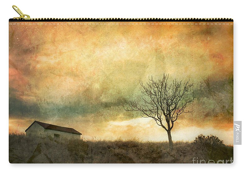 Tree Carry-all Pouch featuring the photograph The Tree And The Roof Top by Tara Turner