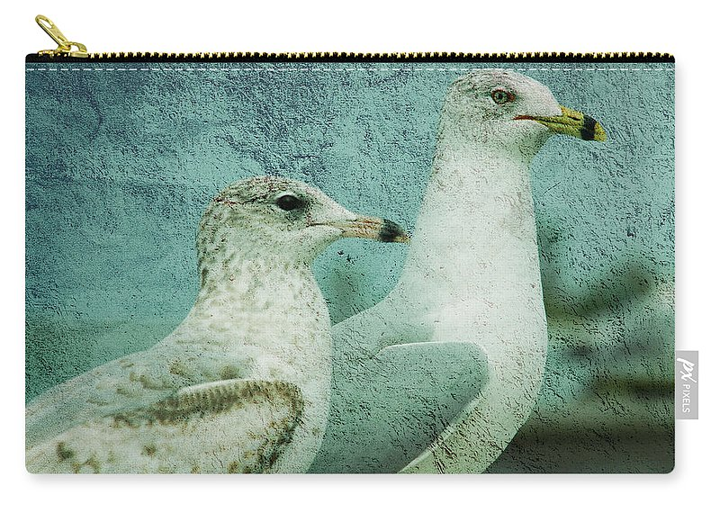 Seagulls Carry-all Pouch featuring the photograph The Two Guys by Susanne Van Hulst