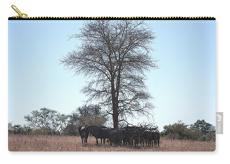 Carry-all Pouch featuring the photograph The Value Of A Shade by Sergio De Abreu