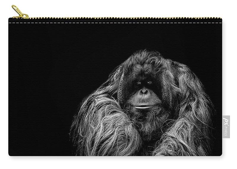 Orangutan Carry-all Pouch featuring the photograph The Vigilante by Paul Neville