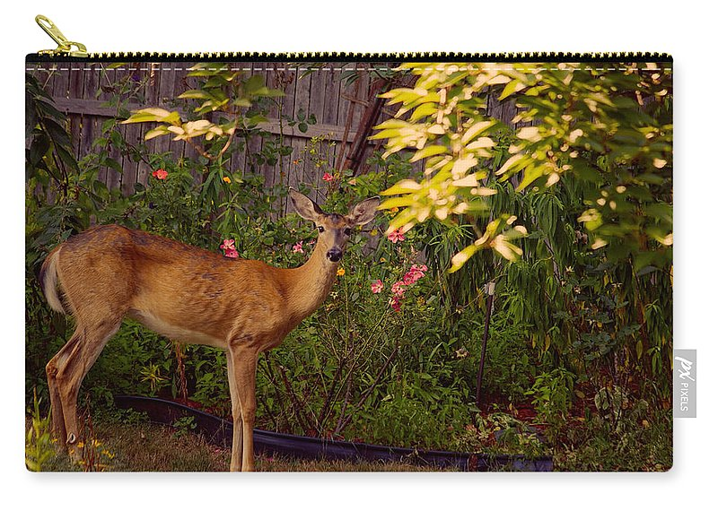 Deer Carry-all Pouch featuring the photograph The Visit by Mike Smale
