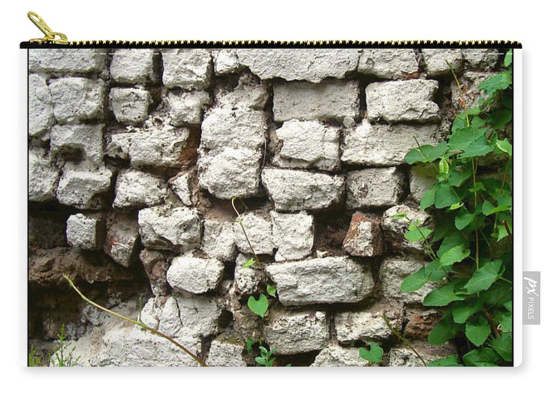 Botanical Carry-all Pouch featuring the photograph The Wall by Joan Minchak