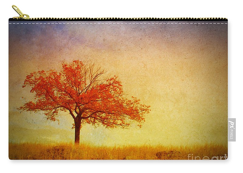 Tree Carry-all Pouch featuring the photograph The Wednesday Tree by Tara Turner