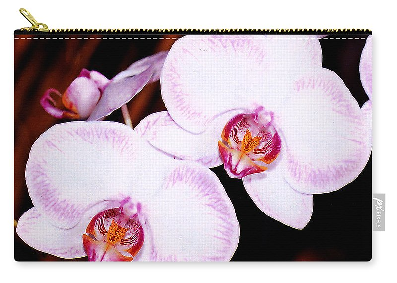 Nature Carry-all Pouch featuring the photograph The White Twins by Susanne Van Hulst