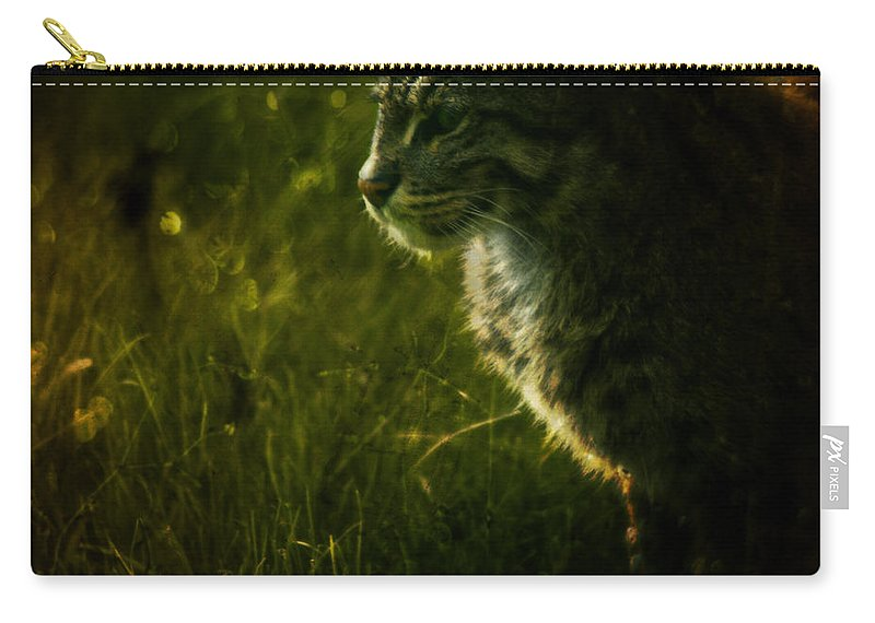 Zoo Carry-all Pouch featuring the photograph The Wild Cat by Angel Ciesniarska