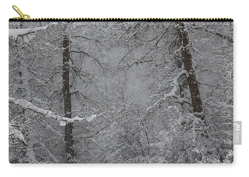 Winter Carry-all Pouch featuring the photograph The Winter Path by DeeLon Merritt